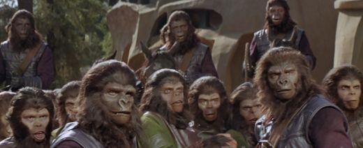 3-18猿の惑星4