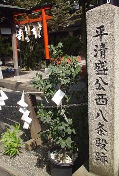 3-11若一神社-2
