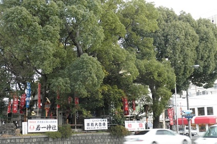 3-16若一神社-9